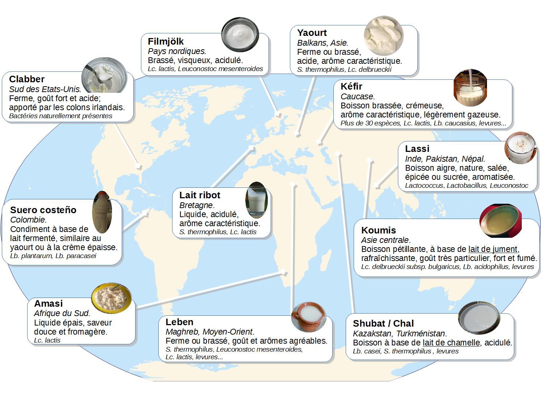 Quelques laits fermentés autour du monde